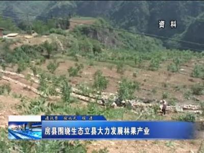 房县围绕生态立县大力发展林果产业