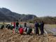 青峰镇:发展烟叶产业 助力脱贫攻坚