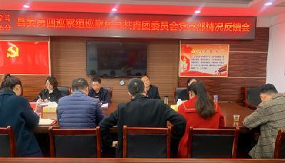 县委第四巡察组向团县委党支部反馈巡察情况
