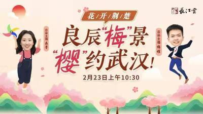 直播 | 瞧,武汉的花开了,云朵主播于您相约今春第一场粉红浪漫!