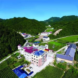 红塔镇人社中心:社保优质服务惠民生