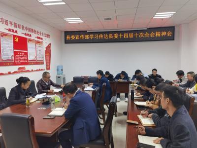 县委宣传部学习贯彻县委十四届十次全会精神