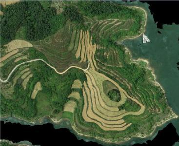 凉水河镇打造柑桔产业大观园 建设乡村振兴示范镇