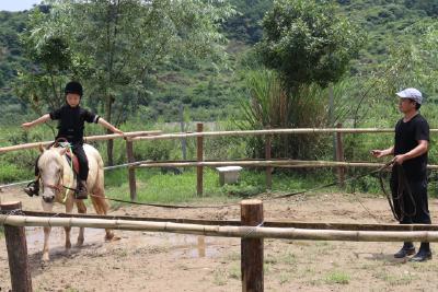 """产业·兴   湖北丹江口六里坪镇:""""马背上的武艺""""为乡村游增亮点"""