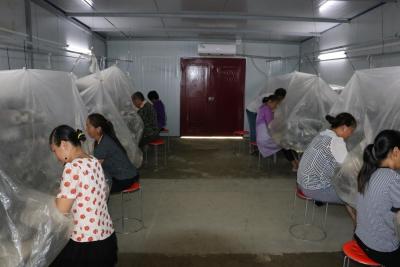 深河乡:保障产业促增收 食用菌制棒全面投产