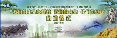 湖北省2019年国际生物多样性日宣传活动