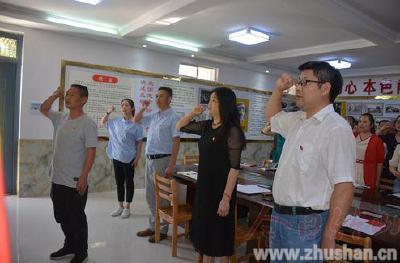 张振武小学:扎实做好6月份主题党日活动