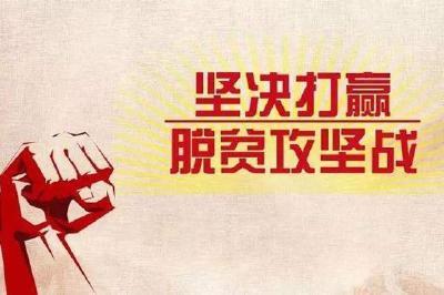 县行政审批局:持续发力做好驻村帮扶工作