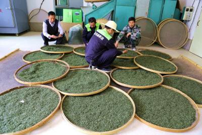 竹山县统一战线参与茶叶产业发展纪实