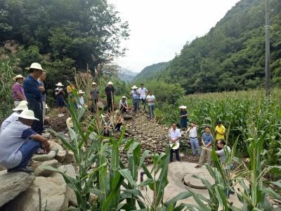 麻家渡镇:多措并举补齐农村安全饮水短板