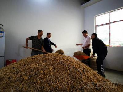 鸡公梁村:集体经济有新增收