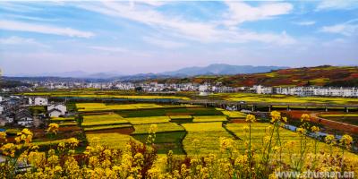 烂漫山花中的美丽乡村(摄影:王俊)