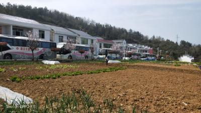 竹坪乡:村民编写传唱顺口溜宣传森林防火安全