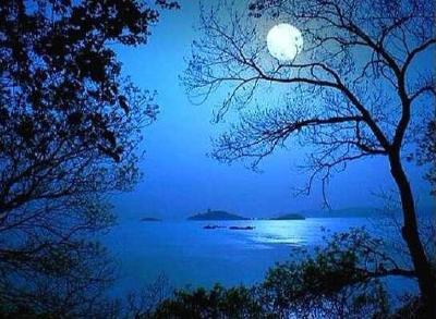 月光下的交談
