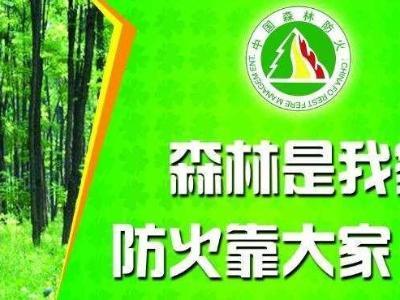 竹山森林公安以专项性行动抓实森林防火工作