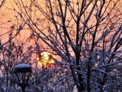 聽竹山 | 落在心里的雪花