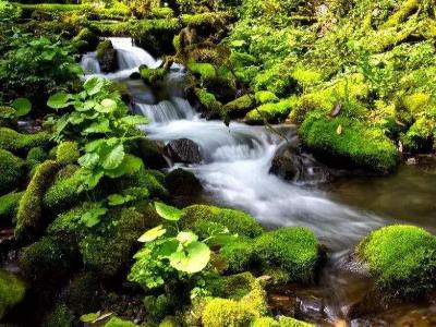 河流及水庫管理和保護范圍劃定成果公示