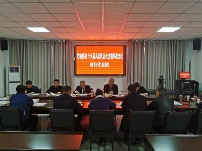劉專參加雙臺鄉人大代表團分組討論