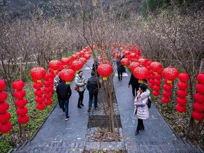 竹山:生态治水助力乡村振兴