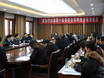 陳建平參加縣政協第二委員組分組討論