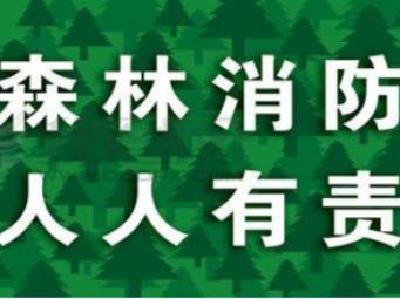 县林业局多措并举 抓实森林防火工作