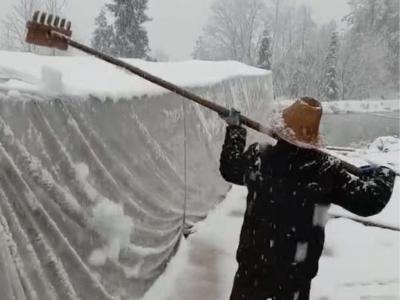 文峰乡:积极除雪 确保大棚安全