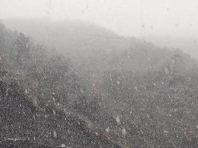 秦古教育系統積極應對雨雪冰凍天氣