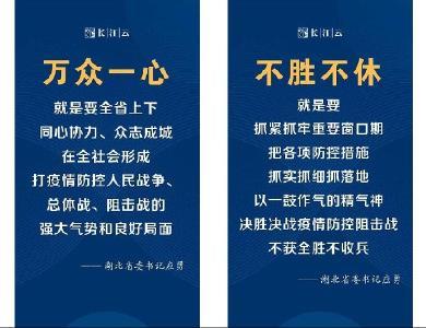 圖解|湖北省委書記應勇:生命重于泰山,救治刻不容緩!