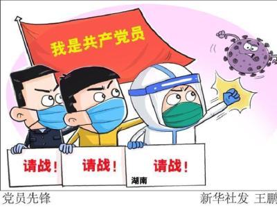 """柳林乡:抗""""疫""""一线的党员群像"""