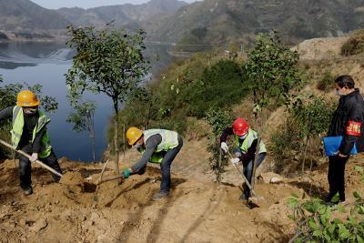 竹山今年預計造林50000畝