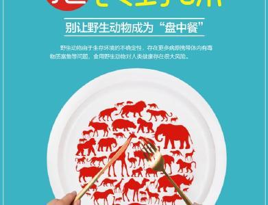 公益广告:拒食野味,保护环境。