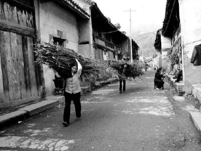 聽竹山|老城縣門街印象