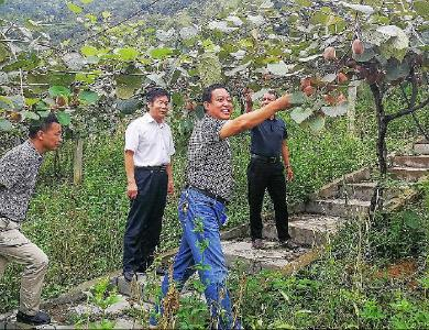 張吉平:扶貧路上踐初心