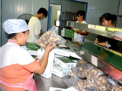 线上发力!竹山农特产品巧借电商俏销全国