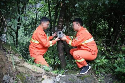 """湖北堵河源保护区:新增50台红外线照相机""""捕捉""""珍稀野生动物"""