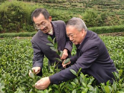 """熊飞:坚守岗位服务抗疫 心系""""三农""""服务产业"""