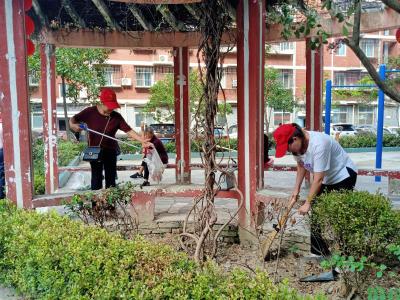 县文旅局党员干部下沉社区开展志愿服务活动