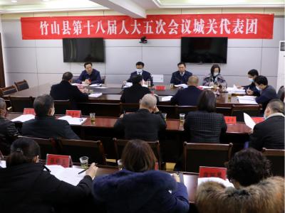陈建平参加城关代表团讨论