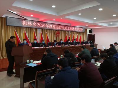 柳林乡召开2020年度抓基层党建工作述职评议会
