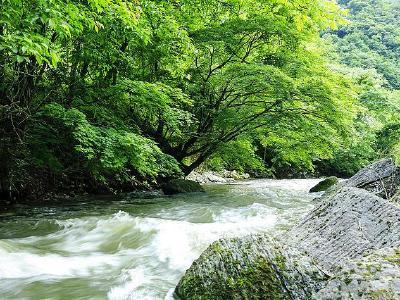美丽堵河源