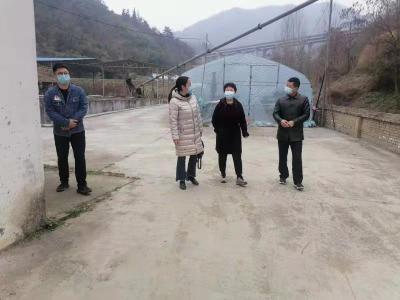 杨金銮到文峰乡调研优化营商环境工作