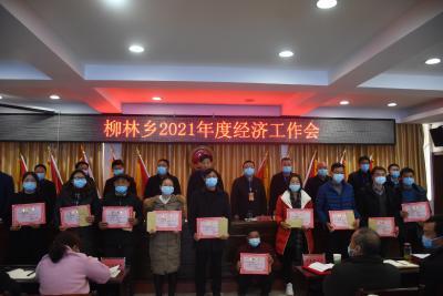 柳林乡谋发展开新局