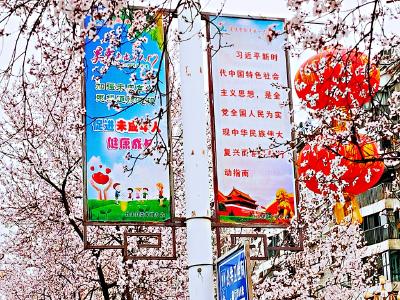 """竹山县""""文明之花""""竞相绽放"""