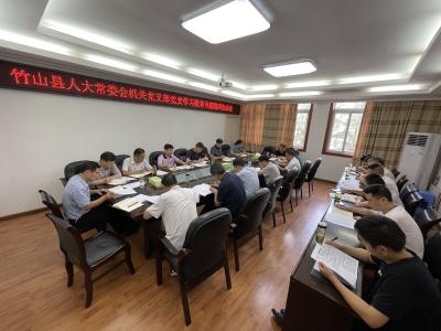 县人大机关党支部召开党史学习教育专题组织生活会