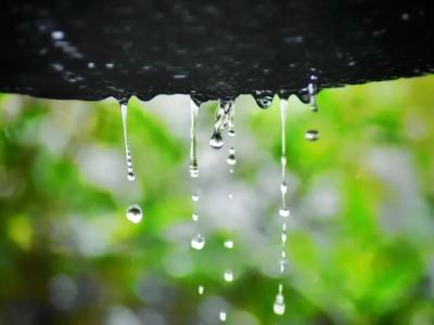 听竹山|停下来,聆听雨的诉说…