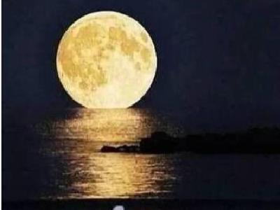 我 陪 月 亮 走