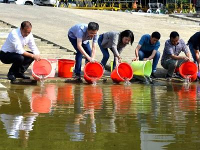 开展增殖放流  优化水生环境