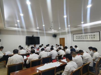 县政府党组中心组开展集体学习暨党史专题学习