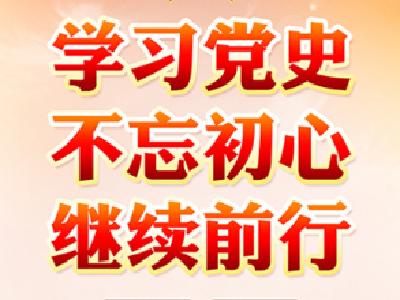 学党史 悟党史 践党史