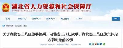 正在公示!荆州这些单位和个人拟获省里表彰,有你认识的吗?